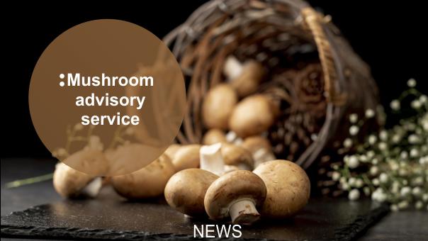 Mushroom advisory service